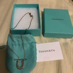 Tiffany and Co.  horseshoe necklace